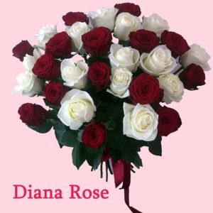 Կարմիր և սպիտակ 31 վարդերով փունջ