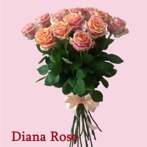 Փունջ 15 Ֆիեստա վարդերից