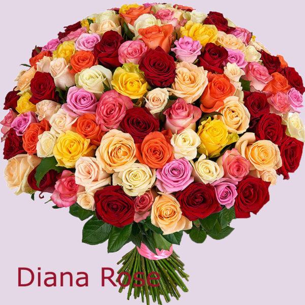 101 բազմագույն վարդերից փունջ