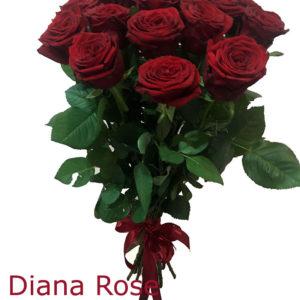 15 կարմիր վարդերով փունջ
